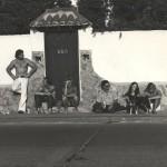 windansea-wall
